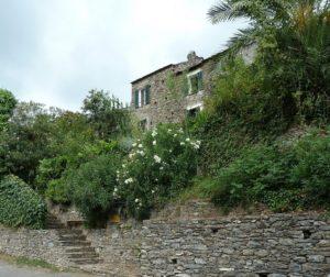 Talasani Village