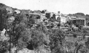 Talasani en noir & blanc