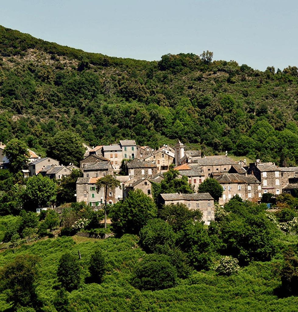 village-talasani-55.jpg