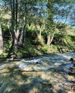 Rivière Talasani