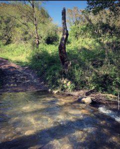 Traversée de la rivière