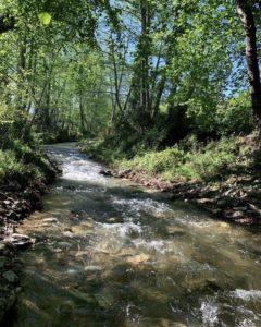 Rivière de Talasani