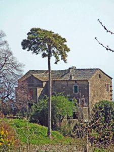 Talasani-maison