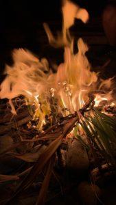 Flammes Talasani