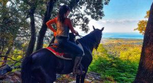 Tavagna A Cavallu Talasani