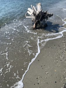 Nettoyage des plages communales